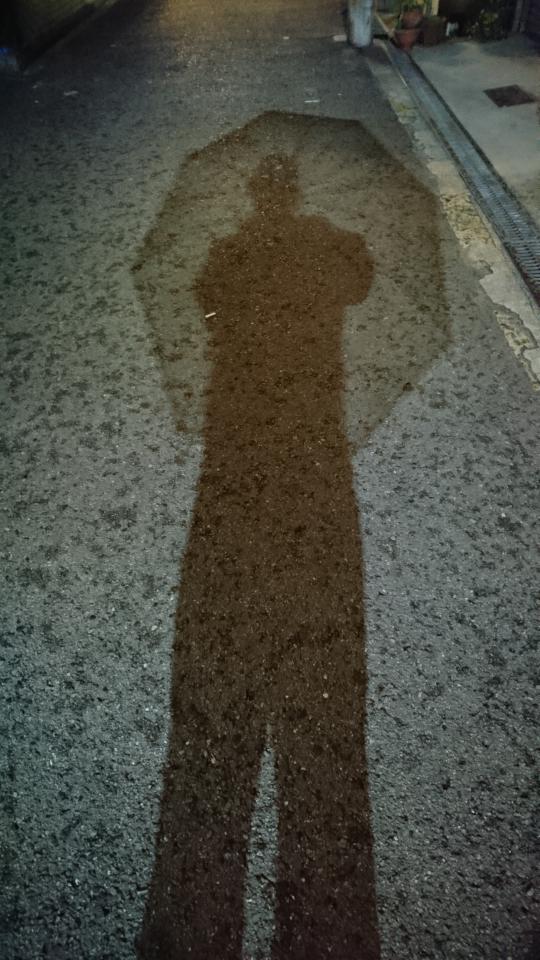 雨降りにビニール傘をさして歩いていると電柱につけられた街灯に照らせれました。足が長く見えませんか。