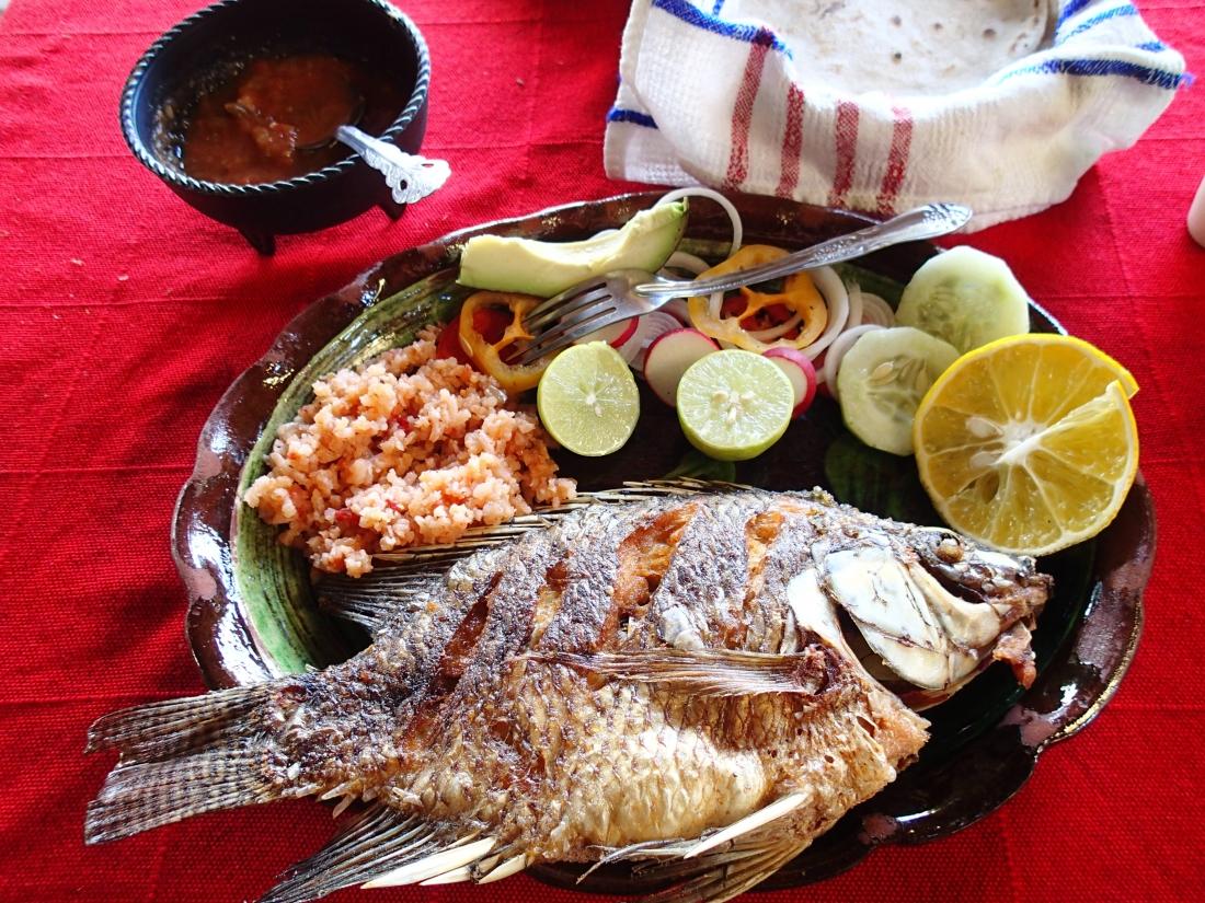 メキシコの料理