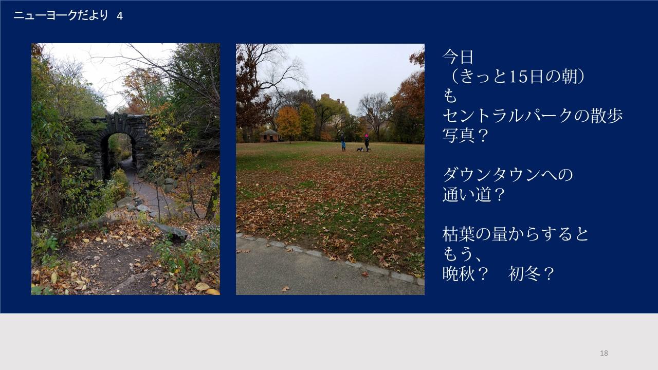 セントラルパークは晩秋の色(ヒロ)